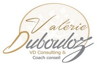 vdconsulting